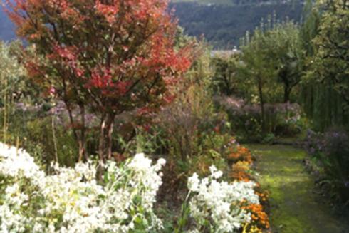 Jardin_automne_2012